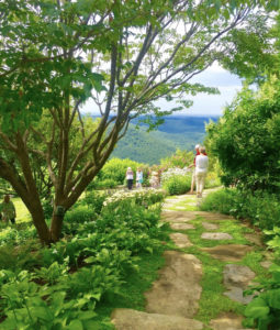 Cover photo for Learn How to Grow: Native Landscapes