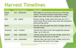 Harvest timelines