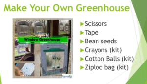 How to Make Your Own Greenhouse