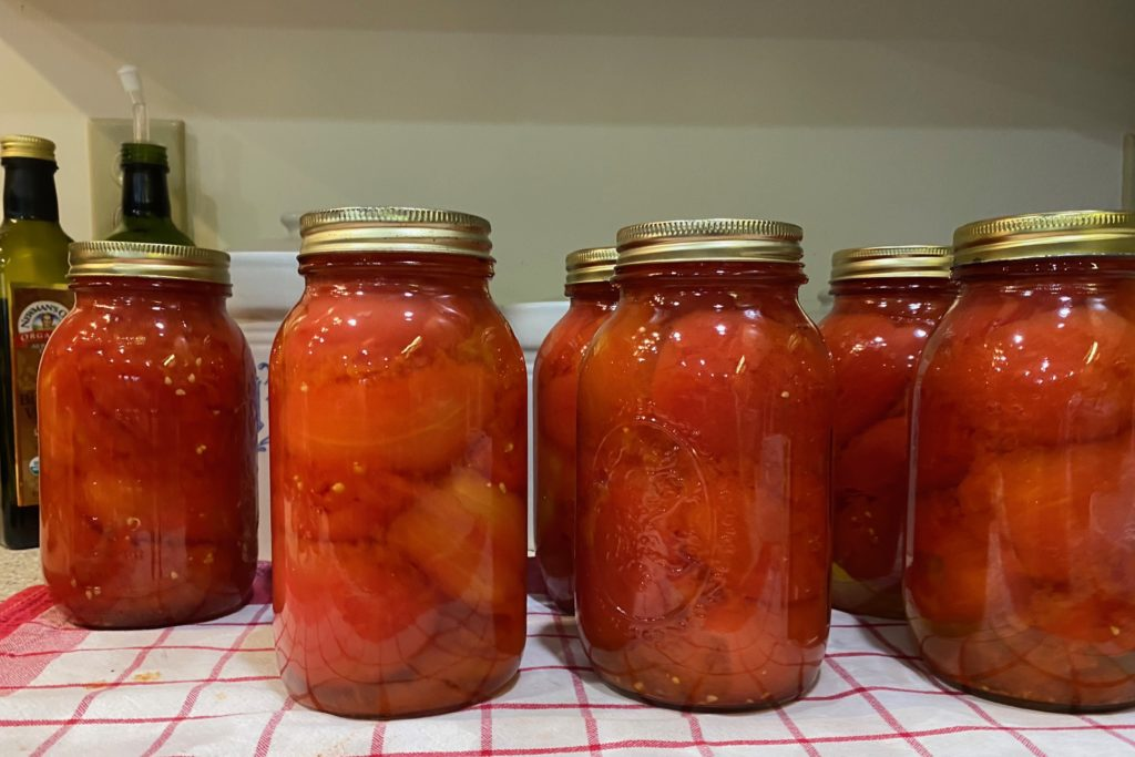 Home preserved tomatoes in ball jars.