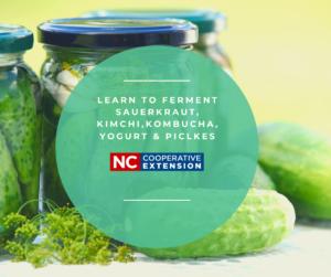 """fermented pickles, cucumbers, """"Learn to Ferment"""" Sauerkraut, Kimchi, Kombucha, yogurt, pickles"""