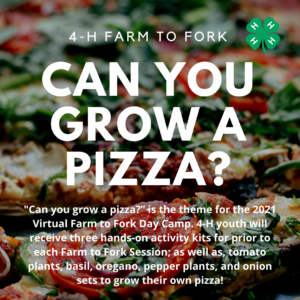 Cover photo for 4-H Farm to Fork Day Camp