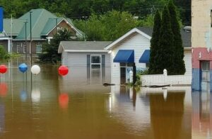 Cover photo for Cleaning Up After the Flood