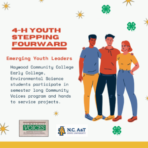 Cover photo for Youth Stepping FOURward Program