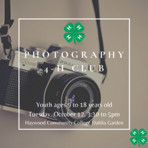Cover photo for 4-H Photography Club