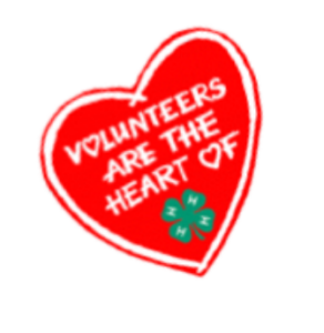 Cover photo for 4-H Needs Volunteer Leaders